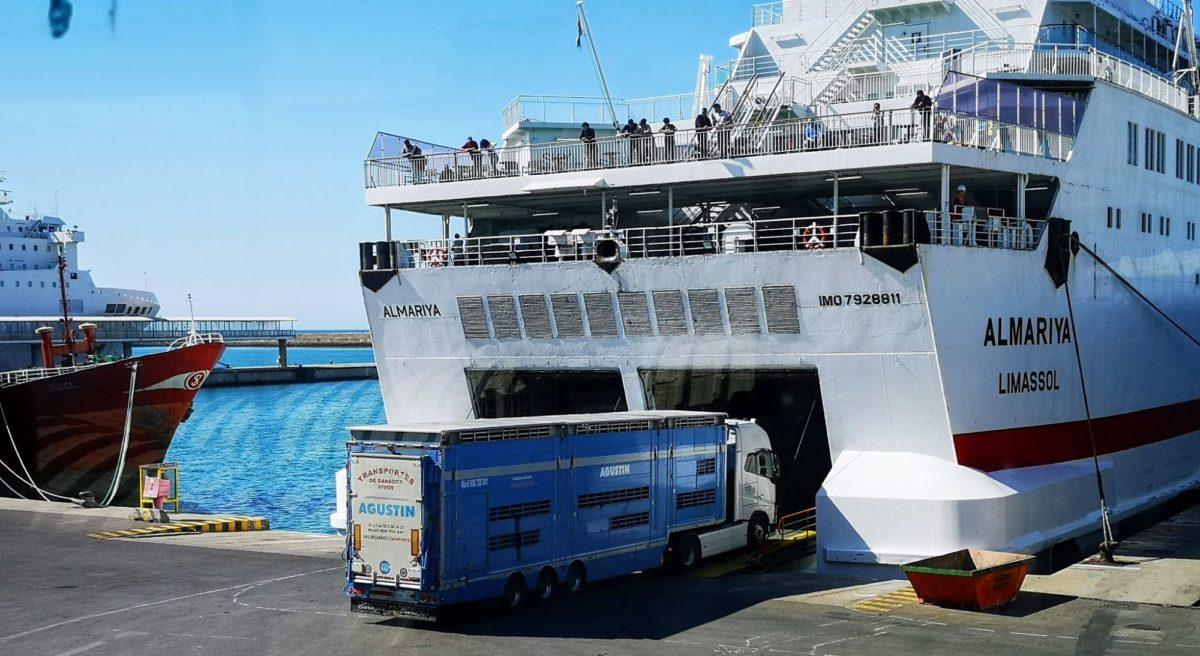 transporte_ro-ro_camin_ganado-archivo_1